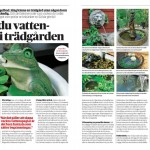 Speglingar och vatten  i trädgården - Sett hos vi i villa 4.2013