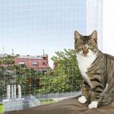 Kattnat balkong kattsaker balkong