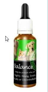 Balance till ditt husdjur